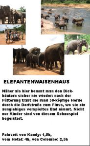 Elefantenwaisenhaus Information