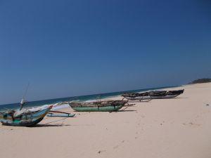 Fischer Catamarane bei Habaraduwa