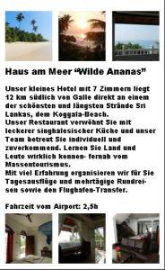 Kurzbeschreibung Hotel Wilde Ananas