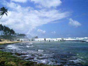 srilanka-stelzen-1