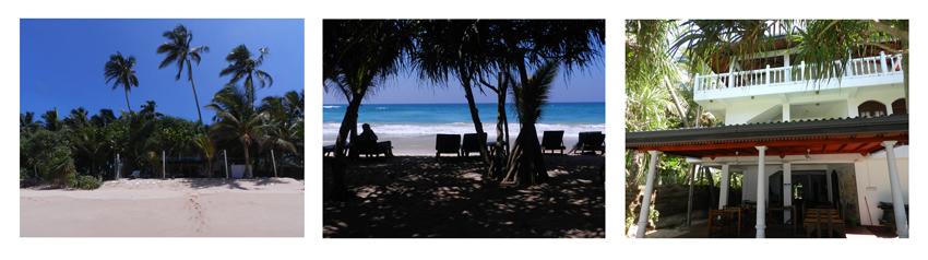 Hotel Wilde Ananas direkt am Meer aus verschiedenen Perspektiven