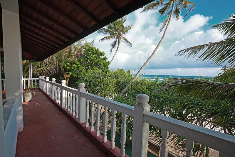 Wilde Ananas Sri Lanka Balkon