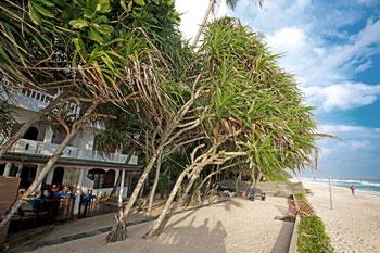 Hotel Wilde Ananas Sri Lanka Strand direkt am Indischen ozean