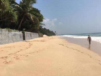 Strand vor der Wilden Ananas
