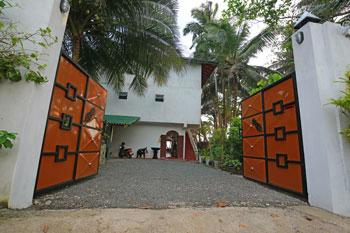 Wilde-Ananas-Sri-Lanka-Tor-Eingang-von der Straße