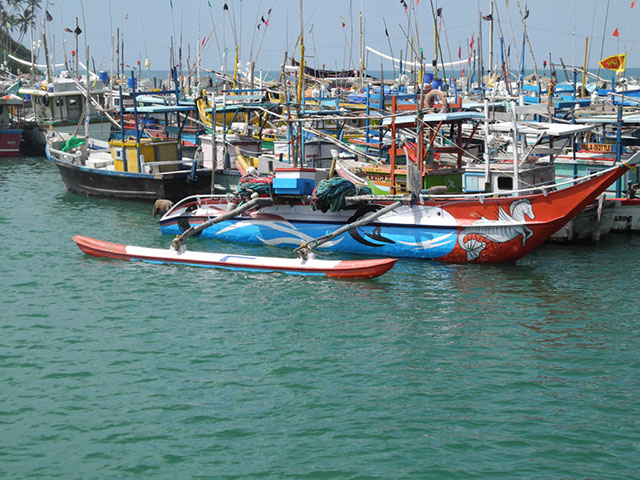 Hafen Port Mirissa von hier aus starten die meisten Wal-Touren im Süden Sri Lankas