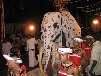 Weisser Elefant mit Schrein auf der Navam Perahera in Colombo