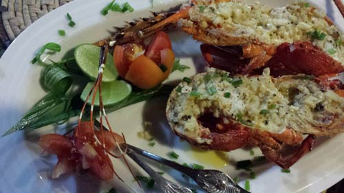 lobster direkt vom seafood-buffet