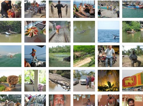 die vielen Gesichter, Farben, Landschaften Sri Lankas